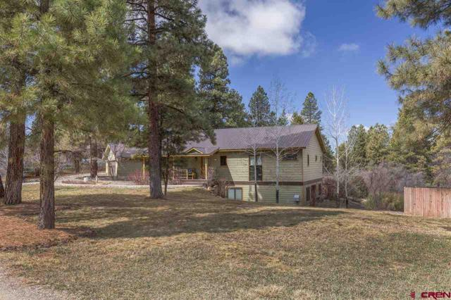 44 Copper Belle, Durango, CO 81301 (MLS #743578) :: Durango Mountain Realty