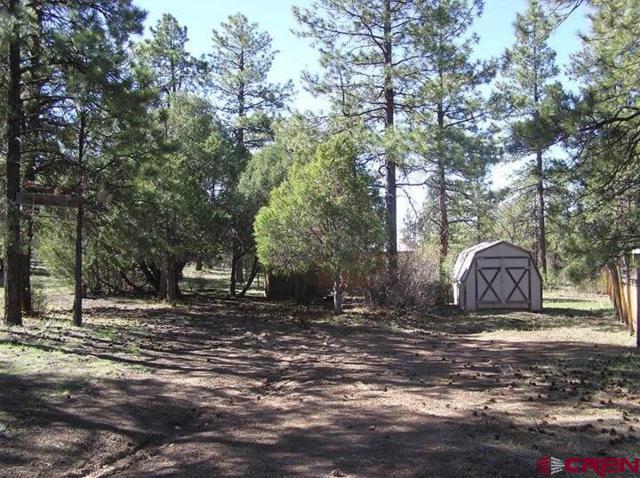 109 Rosebud Court, Pagosa Springs, CO 81147 (MLS #743579) :: CapRock Real Estate, LLC
