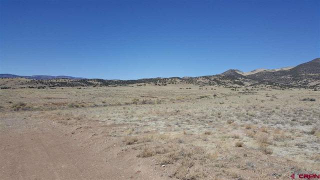 646 Pine Road, Del Norte, CO 81132 (MLS #743587) :: Durango Home Sales