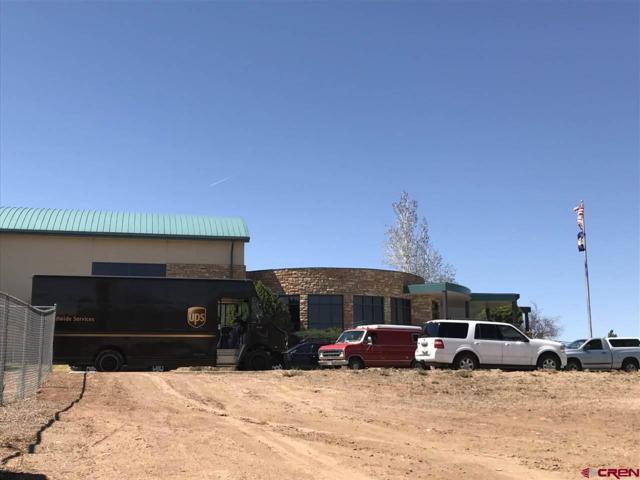1225 E Montezuma, Cortez, CO 81321 (MLS #743596) :: CapRock Real Estate, LLC