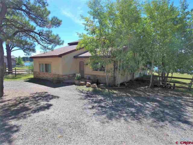 1836 Cr 600, Pagosa Springs, CO 81147 (MLS #743656) :: Durango Home Sales