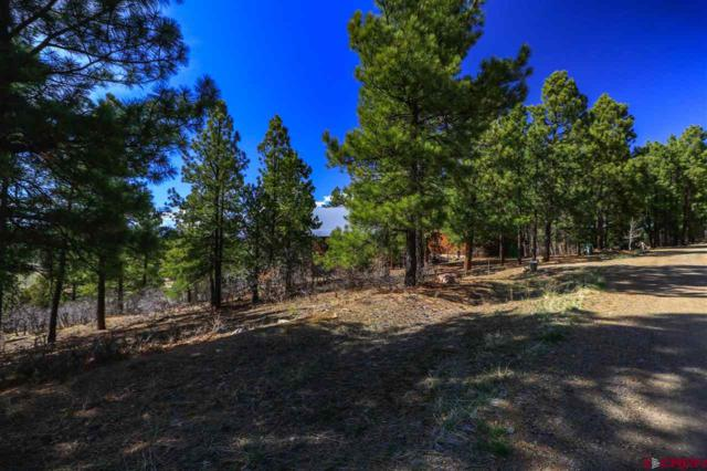 107 Woodland Drive, Pagosa Springs, CO 81147 (MLS #743723) :: Durango Home Sales