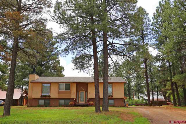 614 Monument, Pagosa Springs, CO 81147 (MLS #743749) :: Durango Home Sales