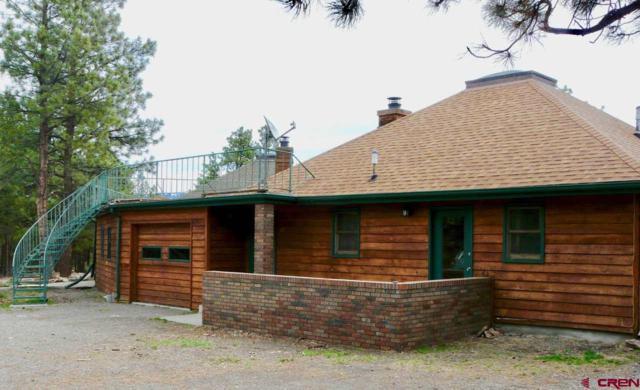79 Meadow Estate Drive, Ridgway, CO 81432 (MLS #743752) :: CapRock Real Estate, LLC
