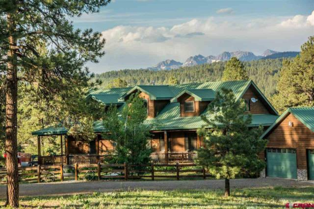 101 Buckboard Place, Pagosa Springs, CO 81147 (MLS #743769) :: Durango Home Sales