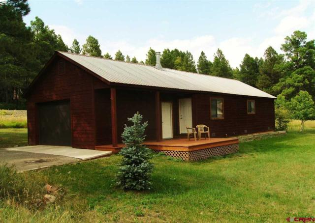 33 Gallop Court, Pagosa Springs, CO 81147 (MLS #743843) :: Durango Home Sales