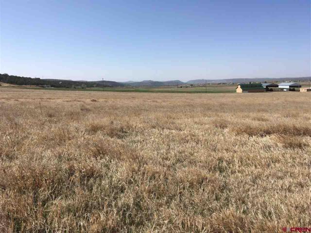 139 Cedar Circle, Durango, CO 81303 (MLS #743890) :: Durango Mountain Realty