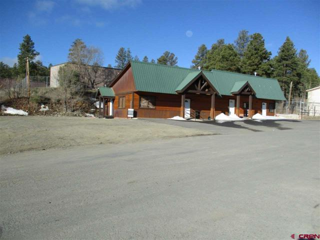 84 Goldmine Drive, Pagosa Springs, CO 81147 (MLS #743905) :: CapRock Real Estate, LLC