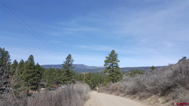 235 & 279 Cat Creek Overlook, Pagosa Springs, CO 81147 (MLS #743976) :: CapRock Real Estate, LLC