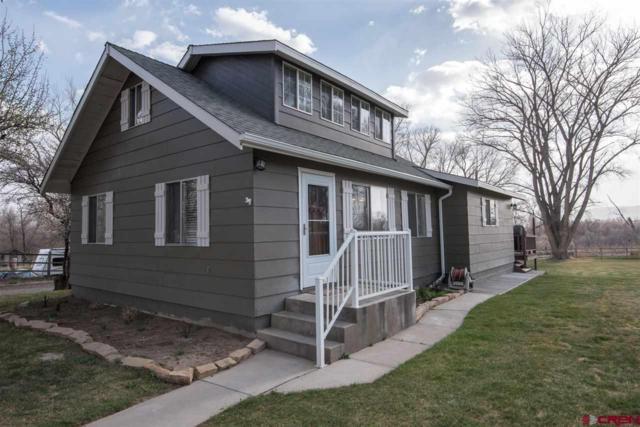 14546 Mustang Lane, Montrose, CO 81403 (MLS #744002) :: CapRock Real Estate, LLC
