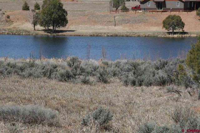 543 Fork Horn Court, Durango, CO 81303 (MLS #744010) :: Durango Mountain Realty