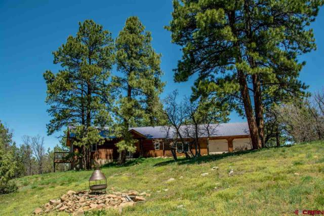 639 Top Ridge Place, Pagosa Springs, CO 81147 (MLS #744012) :: CapRock Real Estate, LLC