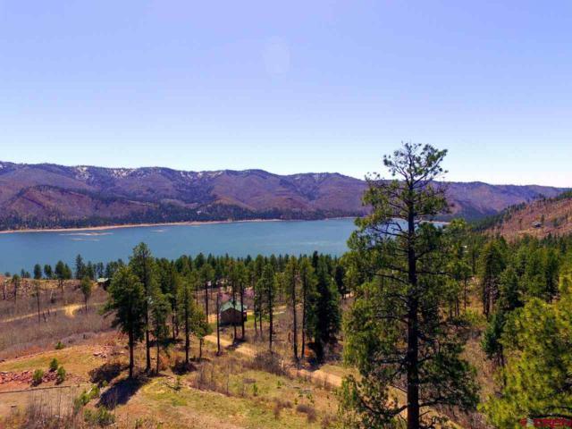 1152 Lake View Drive, Bayfield, CO 81122 (MLS #744023) :: Durango Home Sales