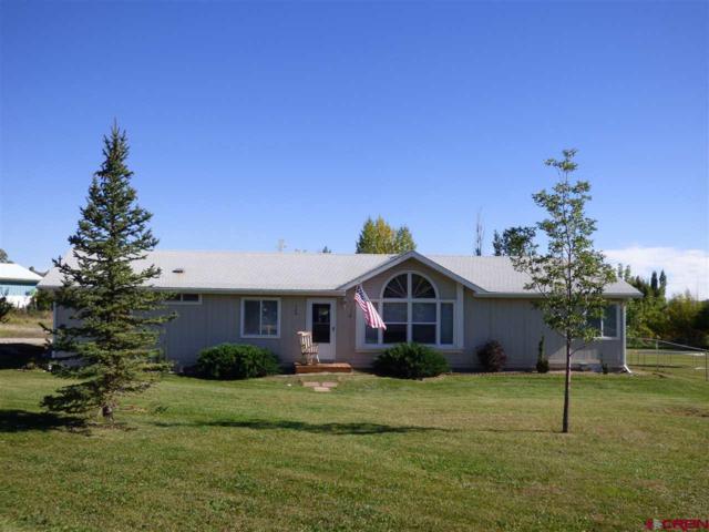 120 Cr 231, Durango, CO 81303 (MLS #744033) :: Durango Mountain Realty