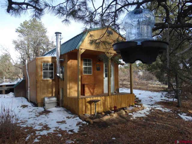 543 Justin's Road, Pagosa Springs, CO 81147 (MLS #744037) :: CapRock Real Estate, LLC