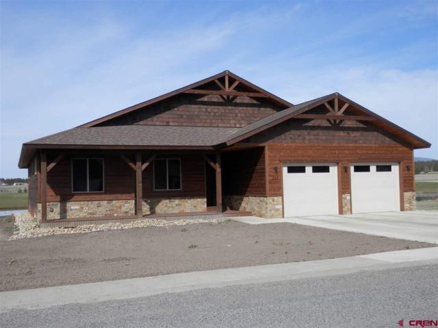 333 Blue Heron Circle, Pagosa Springs, CO 81147 (MLS #744094) :: CapRock Real Estate, LLC