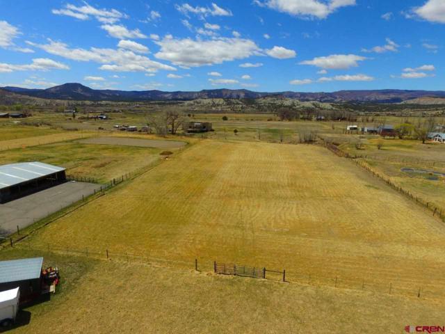 225 N Hylander Drive, Durango, CO 81303 (MLS #744111) :: Durango Mountain Realty