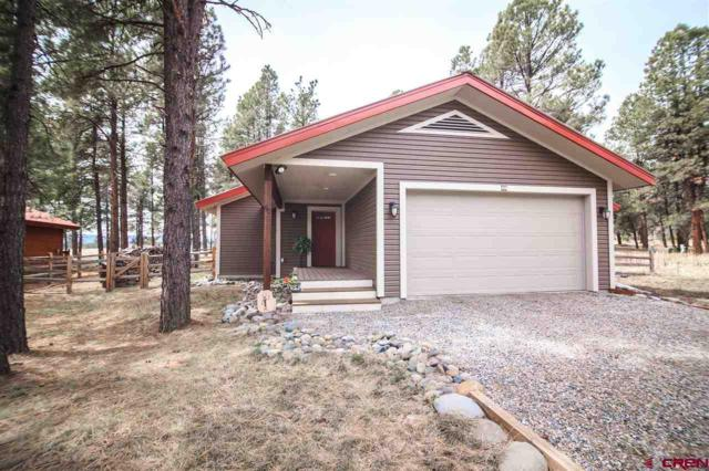 90 Inspiration, Pagosa Springs, CO 81147 (MLS #744203) :: The Dawn Howe Real Estate Network | Keller Williams Colorado West Realty