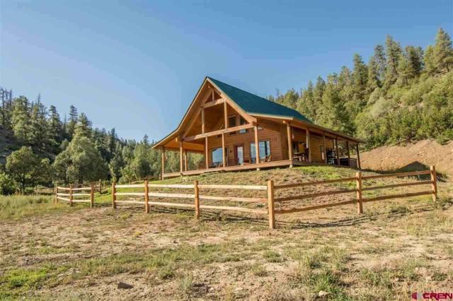 5458 State Hwy 151, Pagosa Springs, CO 81147 (MLS #744210) :: The Dawn Howe Real Estate Network | Keller Williams Colorado West Realty