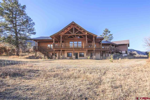 1329 Spring Valley Ranch, Pagosa Springs, CO 81147 (MLS #744212) :: Durango Home Sales