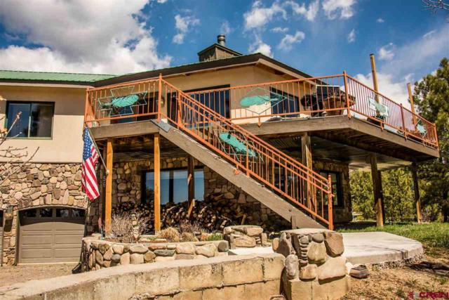 56 Chestnut Court, Pagosa Springs, CO 81147 (MLS #744237) :: Durango Home Sales