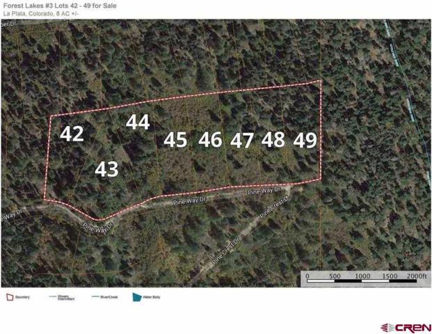 135 Angels Drive, Bayfield, CO 81122 (MLS #744263) :: CapRock Real Estate, LLC