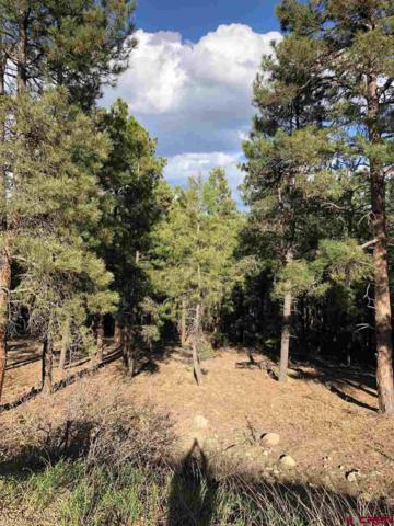 30 Moffat Court, Pagosa Springs, CO 81147 (MLS #744290) :: Durango Home Sales