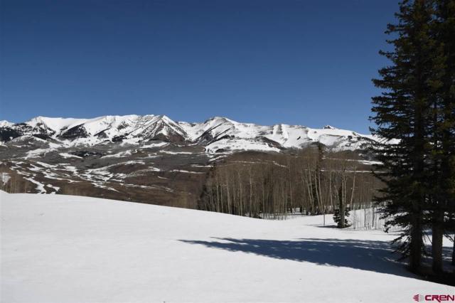 103 Bear Scratch Road, Mt. Crested Butte, CO 81225 (MLS #744347) :: CapRock Real Estate, LLC