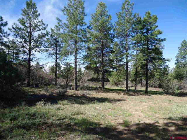 1016 Gun Barrel Road, Pagosa Springs, CO 81147 (MLS #744351) :: CapRock Real Estate, LLC