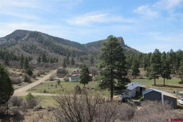 85 Hummingbird Place, Pagosa Springs, CO 81147 (MLS #744402) :: CapRock Real Estate, LLC