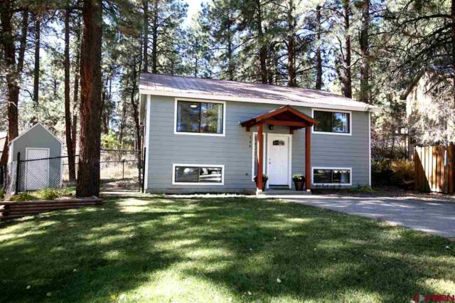 144 Timber Drive, Durango, CO 81303 (MLS #744429) :: CapRock Real Estate, LLC