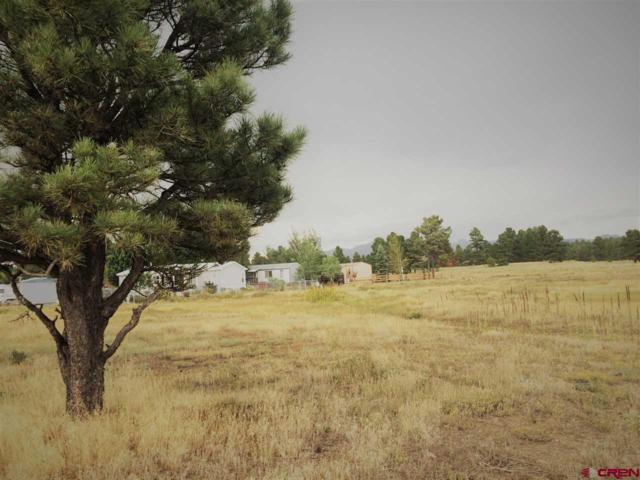 65 Settler Drive, Pagosa Springs, CO 81147 (MLS #744430) :: Durango Home Sales