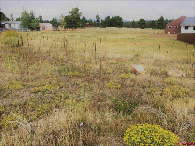 61 Settler Drive, Pagosa Springs, CO 81147 (MLS #744431) :: Durango Home Sales