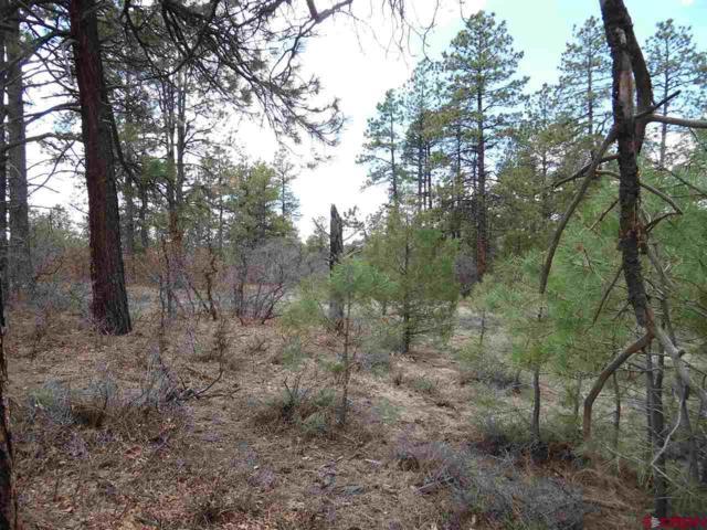 195 Crooked Road, Pagosa Springs, CO 81147 (MLS #744479) :: CapRock Real Estate, LLC