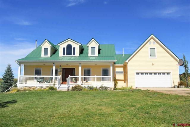 730 Florida Meadows Lane, Durango, CO 81303 (MLS #744497) :: Durango Home Sales