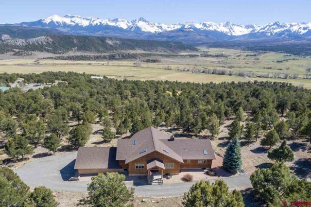 228 Pleasant Valley Court, Ridgway, CO 81432 (MLS #744607) :: Durango Home Sales