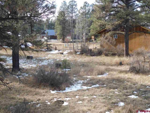 242 Capitan Circle, Pagosa Springs, CO 81147 (MLS #744614) :: Durango Home Sales