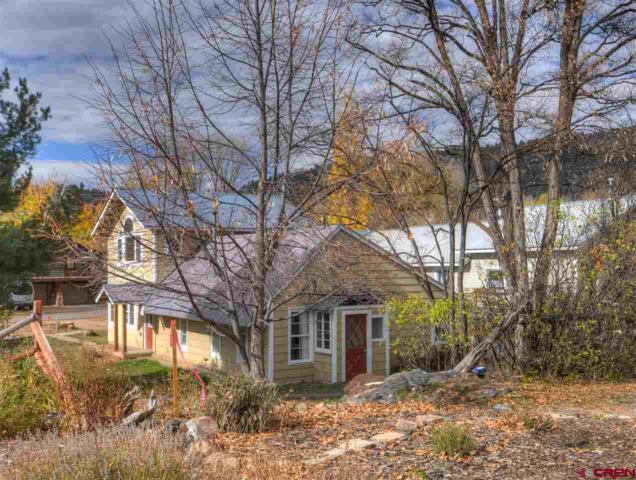 3021 E 5th Avenue, Durango, CO 81301 (MLS #744651) :: Durango Home Sales