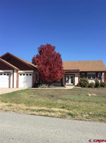 1096 Homestead Drive, Bayfield, CO 81122 (MLS #744655) :: CapRock Real Estate, LLC