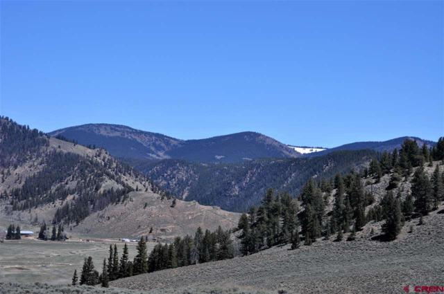 Lot 24 Elk Lane, Almont, CO 81210 (MLS #744667) :: Durango Home Sales