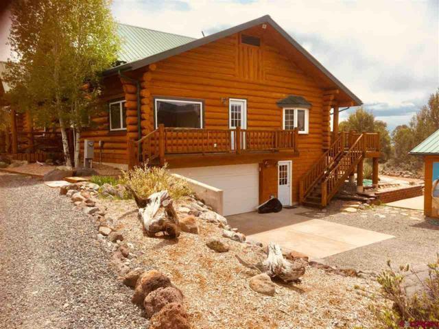 20828 Brimstone Road, Cedaredge, CO 81413 (MLS #744670) :: CapRock Real Estate, LLC