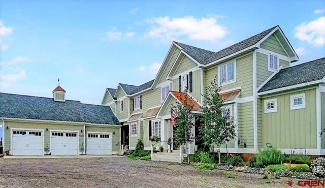 2300 County Road 1A, Montrose, CO 81403 (MLS #744699) :: Durango Home Sales
