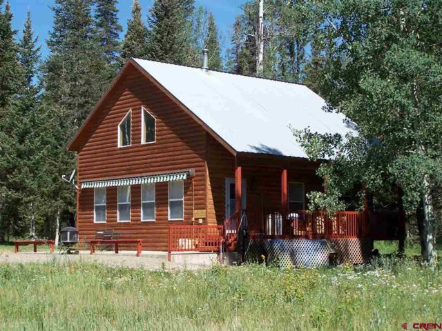 200 Spruce Road, Cimarron, CO 81220 (MLS #744711) :: CapRock Real Estate, LLC
