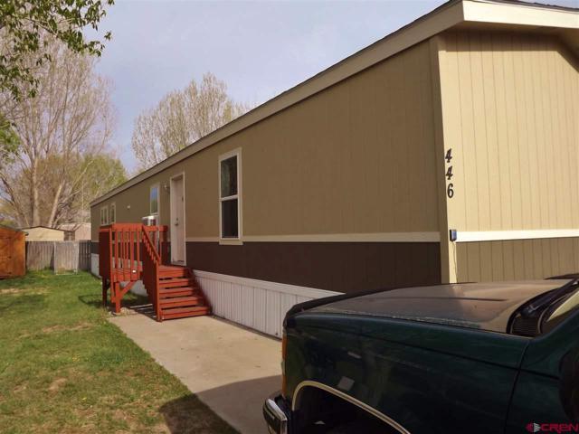 14461 Marine Road #446, Montrose, CO 81403 (MLS #744719) :: Durango Home Sales