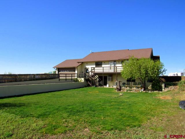 18397 Eastridge Road, Cedaredge, CO 81413 (MLS #744725) :: Durango Home Sales