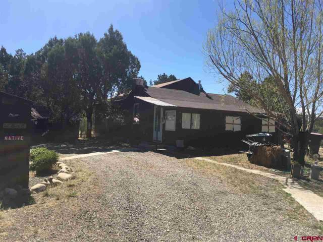 17468A St. Hwy 151, Arboles, CO 81121 (MLS #744736) :: Durango Home Sales