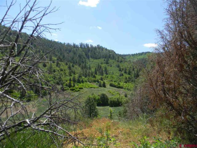 6727 Road 46, Mancos, CO 81328 (MLS #744758) :: Durango Home Sales