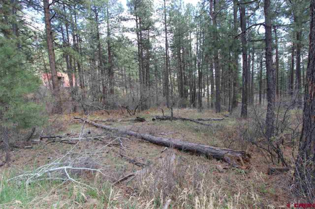 TBD Lakeview Drive, Bayfield, CO 81122 (MLS #744774) :: CapRock Real Estate, LLC