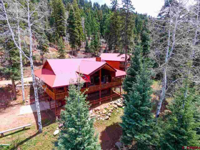 3258 Cr 243, Durango, CO 81301 (MLS #744790) :: Durango Mountain Realty