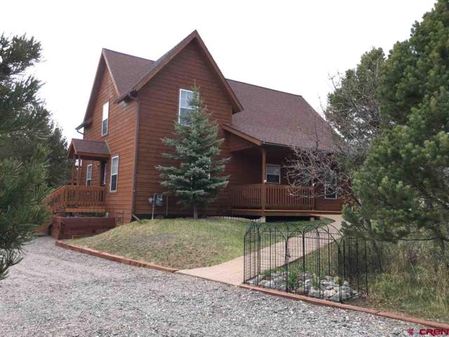 52 Tower Road S, Ridgway, CO 81432 (MLS #744803) :: Durango Home Sales